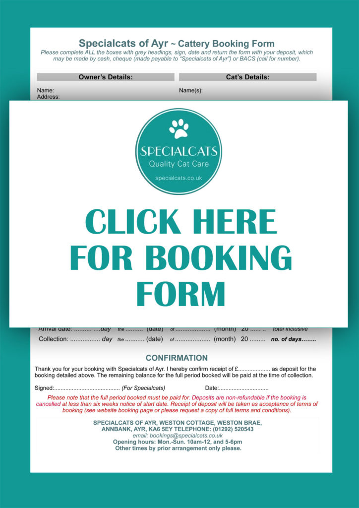 Specialcats-booking-form-pdf-link